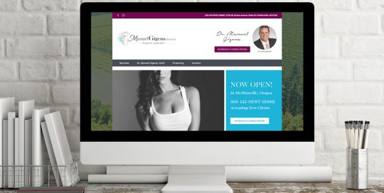 Manuel Gigena Plastic Surgery WordPress Website • 237 Marketing + Web