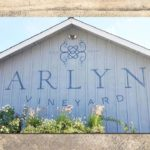 Arlyn Barn Sign • 237 Marketing + Web