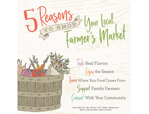 Protected: 5 Reasons to Shop Your Local Farmers Market