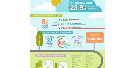 WordPress Infographic by 237 Marketing + Web